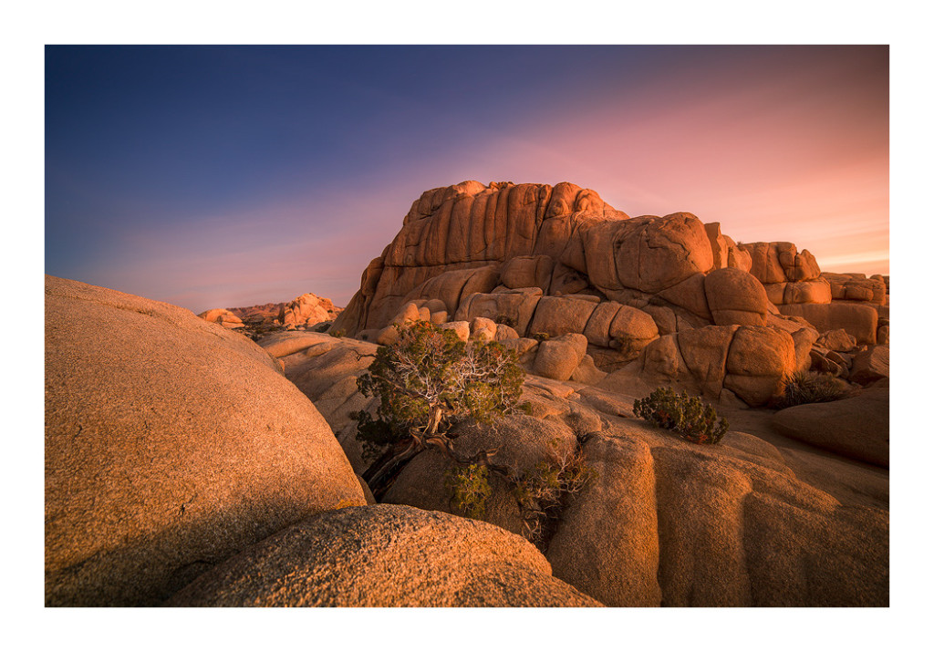 Fine-art photography of Joshua Tree National Park.